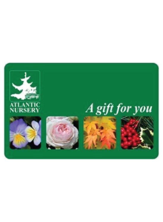 Atlantic Nursery Gift Card